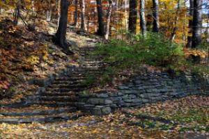 Thumbnail of featured artwork by members: Park Steps
