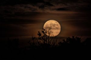 Thumbnail of featured Artwork: Strawberry Moon June 17, 2019